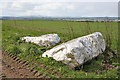 NJ8844 : Auchmaliddie Recumbent Stone Circle (1) by Anne Burgess