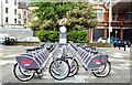 J3374 : Belfast Bikes at the Art College (May 2015) by Albert Bridge