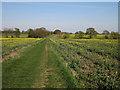 TL3558 : Harcamlow Way by Hugh Venables