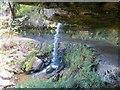 NO2306 : Waterfall, Maspie Den by Richard Webb