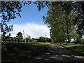 SP9201 : Track to Hawthorn Farm on Chesham Road by David Howard