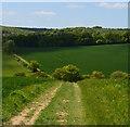 SU7390 : Footpath, Turville, Buckinghamshire by Oswald Bertram