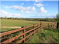SX3471 : Field and Fence by Des Blenkinsopp