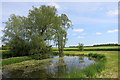 SP7709 : Corner of the Moat by Des Blenkinsopp