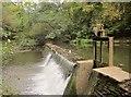 ST6376 : Weir on the Frome by Derek Harper