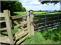 TQ4557 : The North Downs Way at the top of Hogtrough Hill by Marathon
