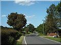 TL4901 : Banks Lane, near Epping by Malc McDonald