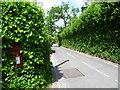 TQ4558 : Cudham Lane South at Horns Green by Marathon