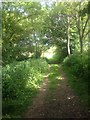 TL3257 : Path along Crow End by Dave Thompson