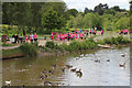 TQ6039 : Race For Life, Dunorlan Park by Oast House Archive