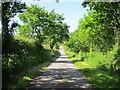 SJ5474 : Depmore Lane, Kingsley by Jeff Buck