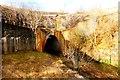 NS7757 : Ravenscraig tunnel by Robert Murray