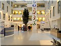 SJ8596 : St Mary's Hospital, The Atrium : Week 25