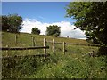 SU0429 : Fences on the downs by Derek Harper