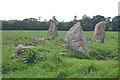 NO9096 : Aquhorthies Recumbent Stone Circle (3) by Anne Burgess