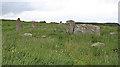 NO9096 : Aquhorthies Recumbent Stone Circle (5) by Anne Burgess