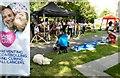 SJ8588 : Loose Change Buskers on Cheadle Green : Week 27
