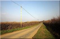 SX2693 : Road east of Maxworthy by Derek Harper