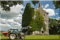 S0823 : Castles of Munster: Loughlohery, Tipperary (2) by Mike Searle