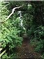 TL0954 : Bridleway near Wilden by Dave Thompson