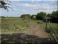 TL4465 : Paddocks by Cottenham Road by Hugh Venables