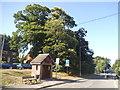 SU9069 : Fernbank Road, North Ascot by David Howard