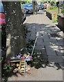 ST5775 : Montage by tree, Devonshire Road by Derek Harper