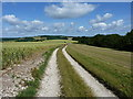 SU9513 : Between Littleton End and Sutton Down by Richard Law