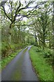 SH6236 : Road climbing through Coed Garth Byr by DS Pugh