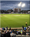 TQ2905 : Hove: one-day floodlit cricket : Week 30