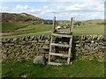 SJ9573 : Stile and erratic near Walker Barn by Dave Dunford