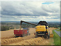 SD5201 : Harvesting barley South of Billinge Hill by Gary Rogers