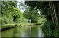 SJ9048 : Caldon Canal north-east of Hanley, Stoke-on-Trent by Roger  Kidd