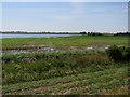 TL5072 : Flooded field near Lazy Otter by Hugh Venables
