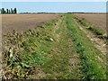 TL3589 : Farmland track on Benwick Mere by Richard Humphrey