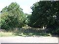 TL0937 : Farm track near Cainhoe Manor by JThomas