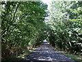 TL0735 : Silsoe Road by JThomas