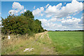 SE8219 : Bridleway adjacent to access land by Trevor Littlewood
