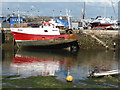 SX9256 : Brixham Harbour : Week 35