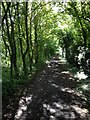 TL4052 : Haslingfield Footpath by Dave Thompson