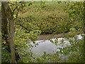 Dist:0.4km<br/>Downstream of Dinlabyre Bridge.