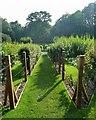 SO8610 : Painswick Rococo Gardens - Kitchen garden by Rob Farrow