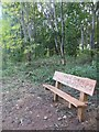 TL1150 : New bench near Danish Camp by James Wood