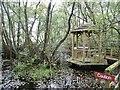 SJ5770 : Stonyford, wetland by Mike Faherty