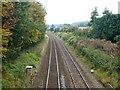 SP8704 : Railway south of Cobblershill Lane bridge by Robin Webster