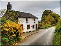 SD5007 : Stone Cottage on Crow Lane by David Dixon