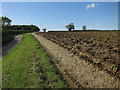 TL6551 : Field by Temple End Road by Hugh Venables