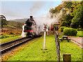 SD7920 : Steam Train at Irwell Vale by David Dixon