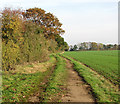 TM2690 : Footpath following concrete WW2 road by Evelyn Simak
