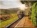SD7920 : Steam Train Leaving Irwell Vale by David Dixon